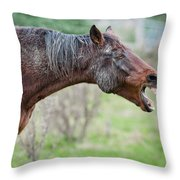 Horse Laugh Throw Pillow