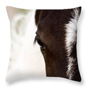 Horse Mare Saskatchewan Field Throw Pillow