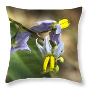 Horse Nettle Nightshade - Solanum Carolinense Throw Pillow