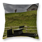 Horse Watching The Carriage Throw Pillow by Darcy Michaelchuk