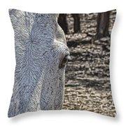 Horse With No Name V2 Throw Pillow
