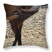 Horse With No Name V4 Throw Pillow