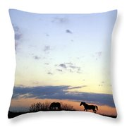 Horses And Sky Throw Pillow