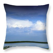 Horses By Lake On Overcast Day Throw Pillow