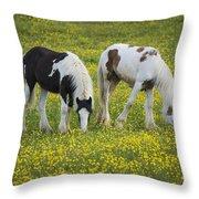 Horses Grazing, County Tyrone, Ireland Throw Pillow