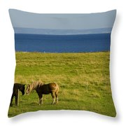 Horses In A Field, Guernsey Cove Throw Pillow