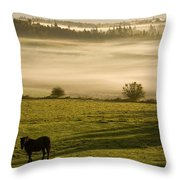 Horses In The Morning Mist, North Throw Pillow