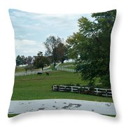 Horses On The Farm 1 Throw Pillow