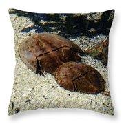 Horseshoe Crabs Throw Pillow