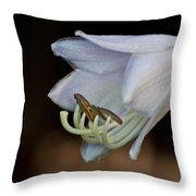 Hosta Blossom 1 Throw Pillow