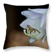 Hosta Blossom 2 Throw Pillow
