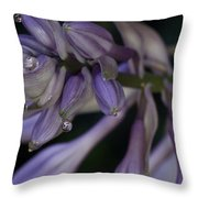 Hosta Blossoms With Dew Drops 6 Throw Pillow