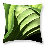 Hosta Leaf Throw Pillow