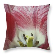 Hot Lips Throw Pillow