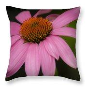 Hot Pink Coneflower Throw Pillow