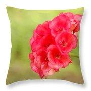 Hot Pink Geranium Throw Pillow