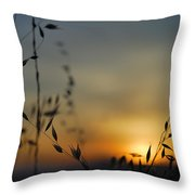 Hot Sunset Throw Pillow