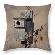 House For Rent Throw Pillow