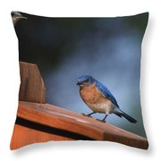 House Inspection Throw Pillow
