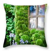 House With Moss Walls Throw Pillow