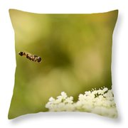 Hovering Over Throw Pillow