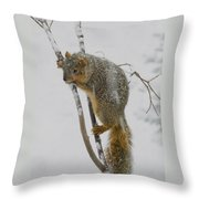 How I Hate Snow Throw Pillow