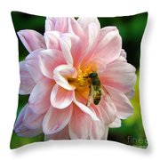 How Sweet In Pink Throw Pillow
