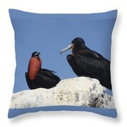 How Was Your Day Throw Pillow