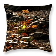 How We Should Leave... Throw Pillow