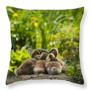 Huddled Goslings Baby Geese Along River's Edge Throw Pillow