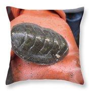 Huge Sea Bug Throw Pillow