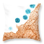 Human Herpes Virus-6 Throw Pillow by Science Source