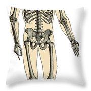 Human Skeleton Throw Pillow