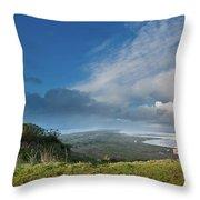 Humboldt Views Throw Pillow