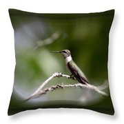 Hummingbird - Bird Throw Pillow