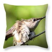 Hummingbird - Ruby-throated Hummingbird - Stretch Time Throw Pillow