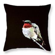 Hummingbird - Ruffled Feathers Throw Pillow