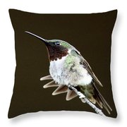 Hummingbird - Wide Tail Throw Pillow
