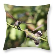 Hummingbird - You Have Done It Now Throw Pillow
