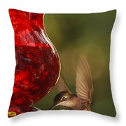Hummingbird At The Feeder Throw Pillow