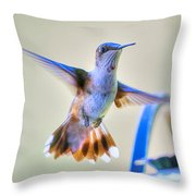Hummingbird At The Feeder Throw Pillow