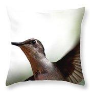 Hummingbird - Closeup Throw Pillow