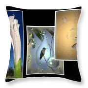 Hummingbird Collage 2009 Throw Pillow