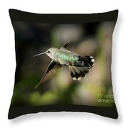 Hummingbird Fly By Throw Pillow
