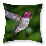 Hummingbird Glory Throw Pillow