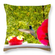 Hummingbird In Cuenca Ecuador Vii Throw Pillow