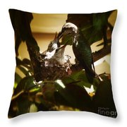 Hummingbird Mother Feeding Her Two Babies II Throw Pillow