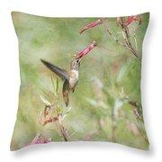 Hummingbird Nourishment Throw Pillow