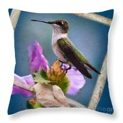 Hummingbird Picture Pretty Throw Pillow