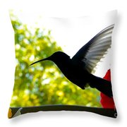 Hummingbird Series 11 Throw Pillow